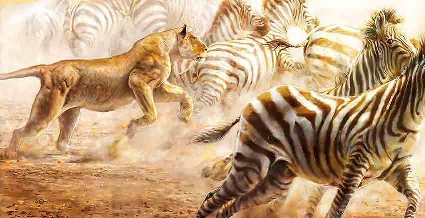 R2733 Canvas Wall Art Canvas Print Tiger, Zebra