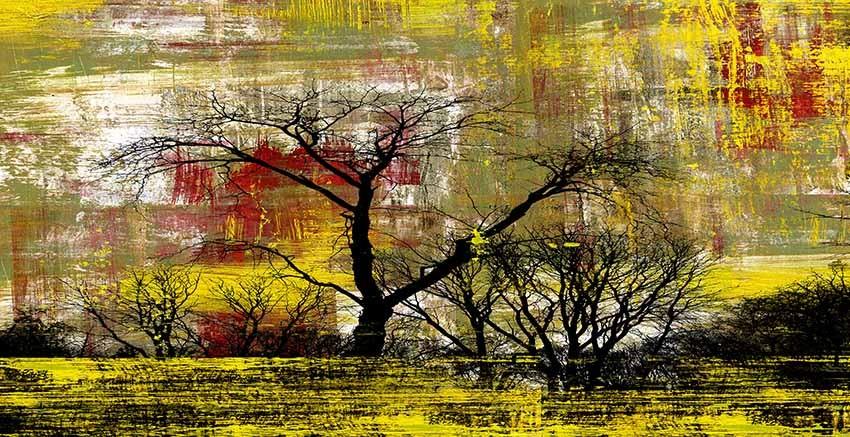 R2805 Canvas Wall Art Canvas Print