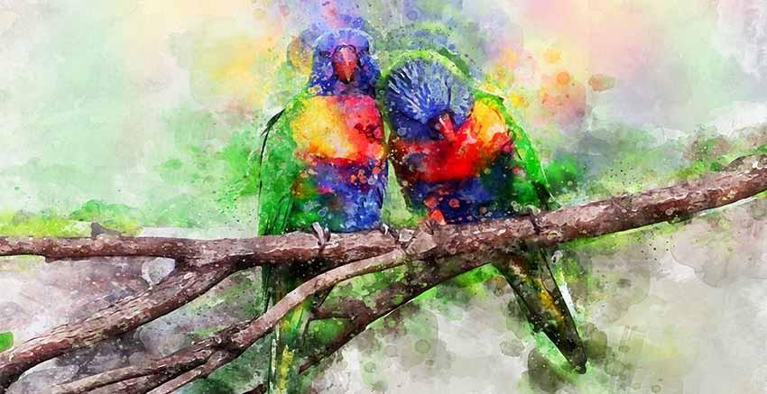 R3011 Canvas Wall Art Canvas Print
