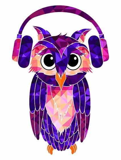 T187 Regular Fit Printed T-Shirt Owl