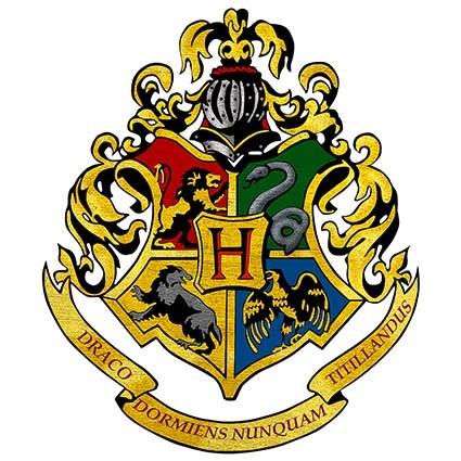T216 Regular Fit Printed T-Shirt Harry Potter