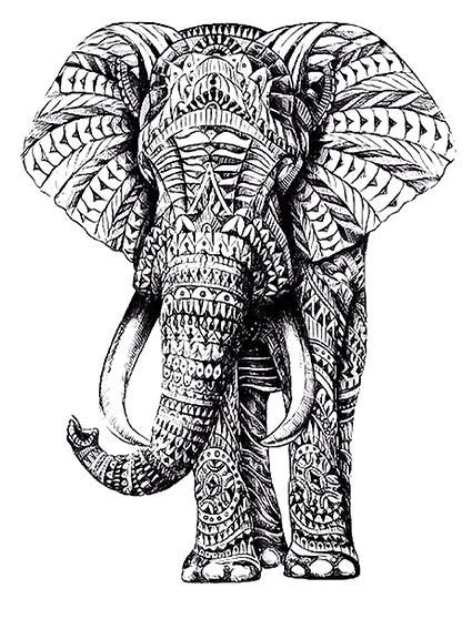 T263 Regular Fit Printed T-Shirt Elephant