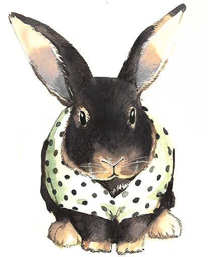 T342 Regular Fit Printed T-Shirt Rabbit