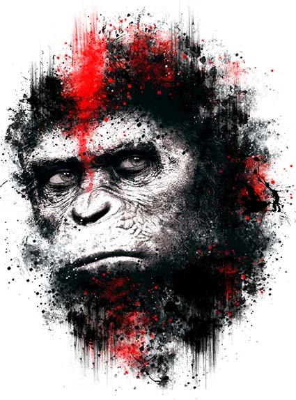 T41 Regular Fit Printed T-Shirt Planet of the Apes