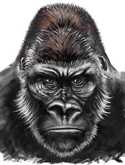 T68 Regular Fit Printed T-Shirt Gorilla