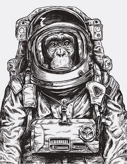 Astronaut Monkey print in  t shirt London