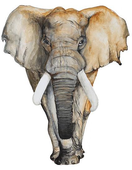 t shirt Print London elephant art