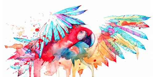 R3057 Water Colour Canvas Wall Art Parrots Canvas Print