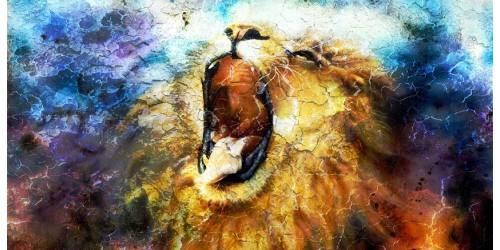 R3189 Lion Canvas Wall Art Canvas Print
